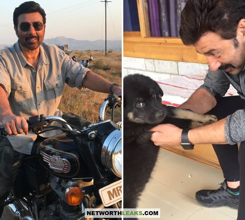 Sunny Deol riding a motorbike and Sunny Deol with his dog
